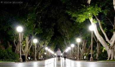 walking in hyde park