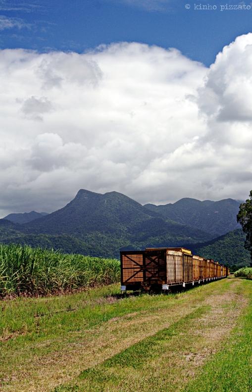 the cane train