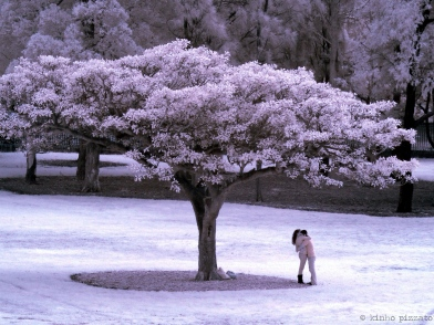 love under the infra-red sun